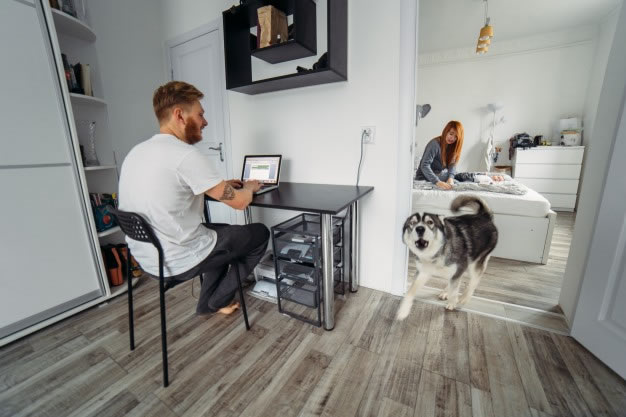 5 Cs do condomínio: Cachorro